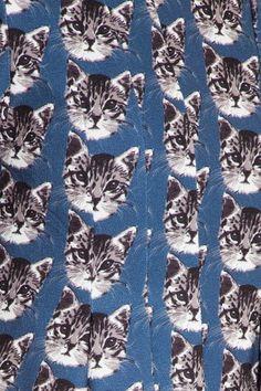 1f7daad475c6 30 Best The Cool Cat Lady Craze images