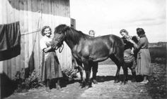 Working with horses - Lotta horse medial unit at work Old Photos, Vintage Photos, Military Positions, Finnish Women, Good Old Times, Horse Photos, Back In Time, Find Picture, Finland
