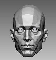 Human Anatomy Art, Face Anatomy, Anatomy For Artists, Anatomy Sketches, Anatomy Drawing, Art Sketches, Planes Of The Face, Anatomy Sculpture, Drawing Heads