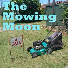 Moon in Gemini Air sign, Gemini is dry and barren – ideal for eradicating pests and weeds, tilling the soil and harvesting. Moon gardeners recommend mowing the lawn while moon is in Gemini to slow regrowth. Although seed sowing is not recommended with Moon in Gemini, tall, stringy plants that grow well in moist environments (celery is the suggestion) are said to go ok.