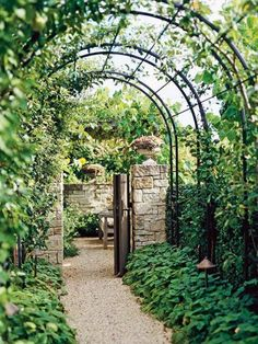 Versatile Garden Arbor