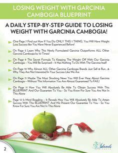 50 pounds weight loss menu plan photo 9