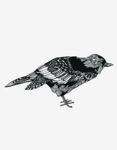 Detailed Fine Pen Illustrations by Chrysa Koukoura