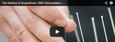 The Science of Acupuncture - BBC Documentary