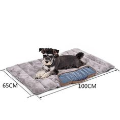 Cheap puppy bed, Buy Quality cat bed directly from China pet cushion Suppliers: PAWZRoad Foldable Dog Cat Mats Soft Pet Cushion Convenience Carry Pet Puppy Bed Warm Thick Cat Bed Travel Essential Puppy Beds, Pet Puppy, Pet Beds, Dog Cat, Dog Pet Store, Cat Mat, Orthopedic Dog Bed, Dog Cushions, Dogs