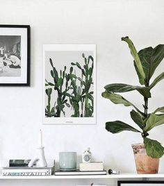 living room updates white vignette with plants
