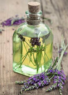 Lavender Oil Uses, Lavandula Angustifolia, Glass Vase, Perfume Bottles, Amazing, Syrup, Perfume Bottle, Lavender