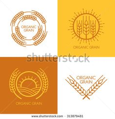 Set of vector linear wheat fields logo design template. Abstract concept for organic products harvest grain bakery healthy food. Logo Rice, Cake Icon, All Caps Font, Festival Logo, Farm Logo, Finance Logo, Wheat Fields, Cross Stitch Art, Logo Design Template