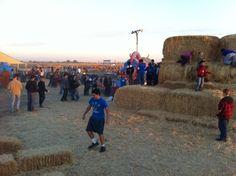 Linder Farms 10-10-12