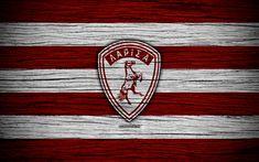 Download wallpapers Larissa FC, 4k, wooden texture, Greek Super League, AEL, soccer, football club, Greece, Athlitiki Enosi Larissa, logo, FC Larissa