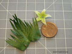Liljat ja kallat ovat mielikukkiani. Tässä yhden sortin lilja, 'Joan Senior'?