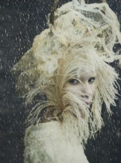 Feathers. Paolo Roversi.