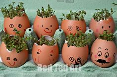 Cress Head Craft for kids
