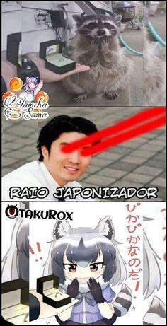 Y que lo subo de nuevo Yamcha-Sama . Anime Meme, Otaku Meme, Manga, O Pokemon, Kemono Friends, Stupid Funny Memes, Funny Games, Best Memes, Kawaii Anime