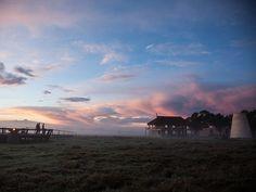 Nos plus beaux hôtels autour du monde / Le Segera Retreat au Kenya