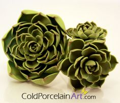 Handcrafted succulents by ColdPorcelainArt