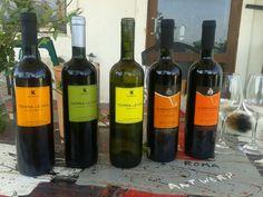 Tasting @ Karanika Estate, Amyntaio, West Macedonia.