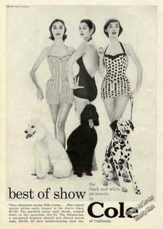 Cole of California Swimwear black & white ad 1956 check out the Poodles