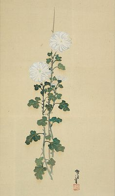 Kiku Imperial Flowers, Painting by Kamisaka Sekka