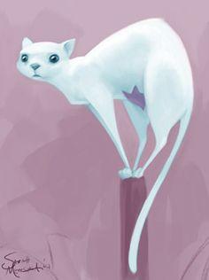 cat illustration ♥︎ Sarah Mensinga
