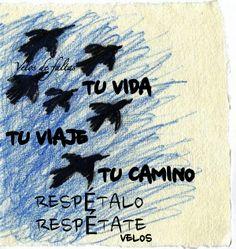 Frase de velos para  página Facebook velos de faltas-despertares Twitter@velosdefaltas