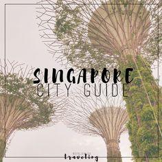 Singapore travel guide !