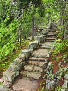 A Stone Staircase at the Thuya Gardens in Northeast Harbor, Maine, Usa - Gardening For You