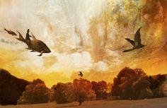 illustration Flying Dreams