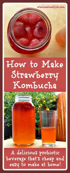 to Make Strawberry Kombucha How to Make Strawberry Kombucha: a delicious probiotic beverage that's cheap and easy to make at home!How to Make Strawberry Kombucha: a delicious probiotic beverage that's cheap and easy to make at home! Probiotic Drinks, Detox Drinks, Healthy Drinks, Healthy Recipes, Healthy Food, Kefir Recipes, Healthy Juices, Top Recipes, Recipies
