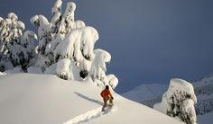 snow shoeing in Alaska