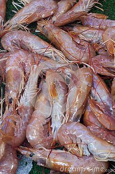 Prawns In Fish Market - Download From Over 50 Million High Quality Stock Photos, Images, Vectors. Sign up for FREE today. Image: 79966986