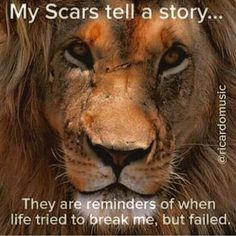 I think when God heals He leaves the scar, both to serve as a reminder of the lesson learned and as a reminder of His mercy in bringing us through it.be the Lion and build your Kingdom Lion Quotes, Me Quotes, Motivational Quotes, Inspirational Quotes, Qoutes, Scar Quotes, Quotes About Scars, Tiger Quotes, Fast Quotes