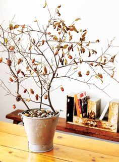 potted branch centerpiece