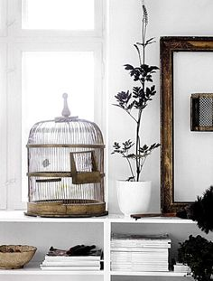 i love empty bird cages. it means they're set free..