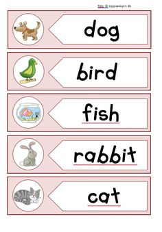 Opgaver engelsk, engelskopgaver indskoling, english worksheets Phrase Interrogative, Reading Comprehension Activities, Vocabulary Worksheets, English, Phonics, Printer, Education, Books, Homeschool