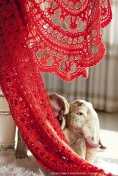 Uncinetto d'oro: Deliziosa scialle rossa!!!