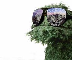 love Oscar (the grouch)!