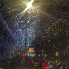 Christmas at the Galt House in Louisville, Kentucky offers variety of things to do to create traditions around the Holidays. Galt House Louisville Ky, Louisville Kentucky, Louisville Restaurants, Unique Restaurants, Lunch Places, Eating Places, Galt House Hotel, Road Trip Usa, Best Places To Eat