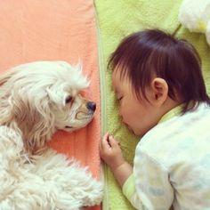 Amizade entre cachorrinha e bebê japonês é sensação no Instagram/