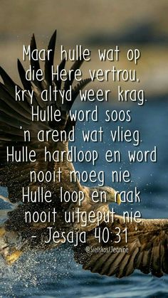 As ek dit net daagliks kan onthou. Biblical Quotes, Religious Quotes, Bible Verses Quotes, Jesus Quotes, Bible Scriptures, Faith Quotes, Bible Prayers, Afrikaanse Quotes, Inspirational Verses