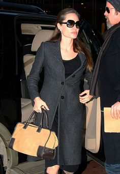 The Many Bags of Angelina Jolie - Loewe Amazona Bag