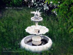 the forgotten garden by lorenzo1379. @go4fotos