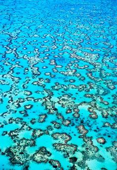 An aerial view of the Great Barrier Reef in Australia. The Great BArrier is the world's largest coral reef system, with over 3,000 individual reefs and over 900 islands stretching for over 1,600 miles. The reef is located in the Coral Sea off the coast Queensland, Australia.