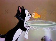 <3 Figaro and Cleo :)