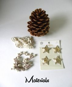 kraftmint_pinecone_materials_small