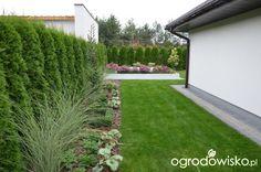 """Jak """"ożywić"""" mój szmaragdowy ogród - strona 1219 - Forum ogrodnicze - Ogrodowisko Backyard Landscaping, Sidewalk, Landscape, Outdoor, Gardens, Lawn And Garden, Outdoors, Backyard Landscape Design, Scenery"""