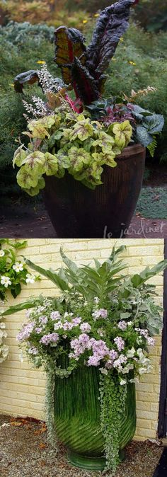 Container Gardening Ideas - 24 stunning container garden designs with PLANT LIST for each! Lots of designer tips on selecting the best mix of flower plants and creating a beautiful colorful garden which blooms all season with these planting recipes! Diy Garden, Garden Planters, Garden Projects, Garden Ideas, Container Flowers, Container Plants, Container Design, Container Gardening Vegetables, Vegetable Garden