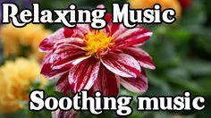 Nyugtató zene Relaxációs zene