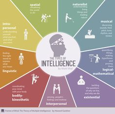 The types of #intelligence. #infographic #psychology #emotion #nature #music #perception #rhythm #tone #timbre #thinking #social #feeling #body #mind #coordination #word #expression #language #understanding #logic #spatial