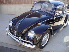 Resultado de imagen para vw classic beetle resto